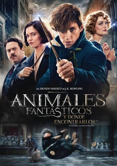 Animales fantásticos y dónde encontrarlos explota el universo mágico de Harry Potter